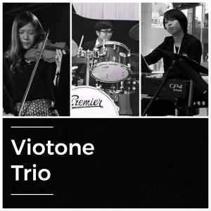 Viotone Trio